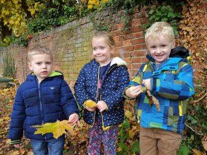 autumn-leaves-web